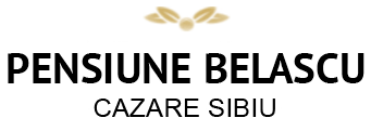 Pensiune Belascu Logo